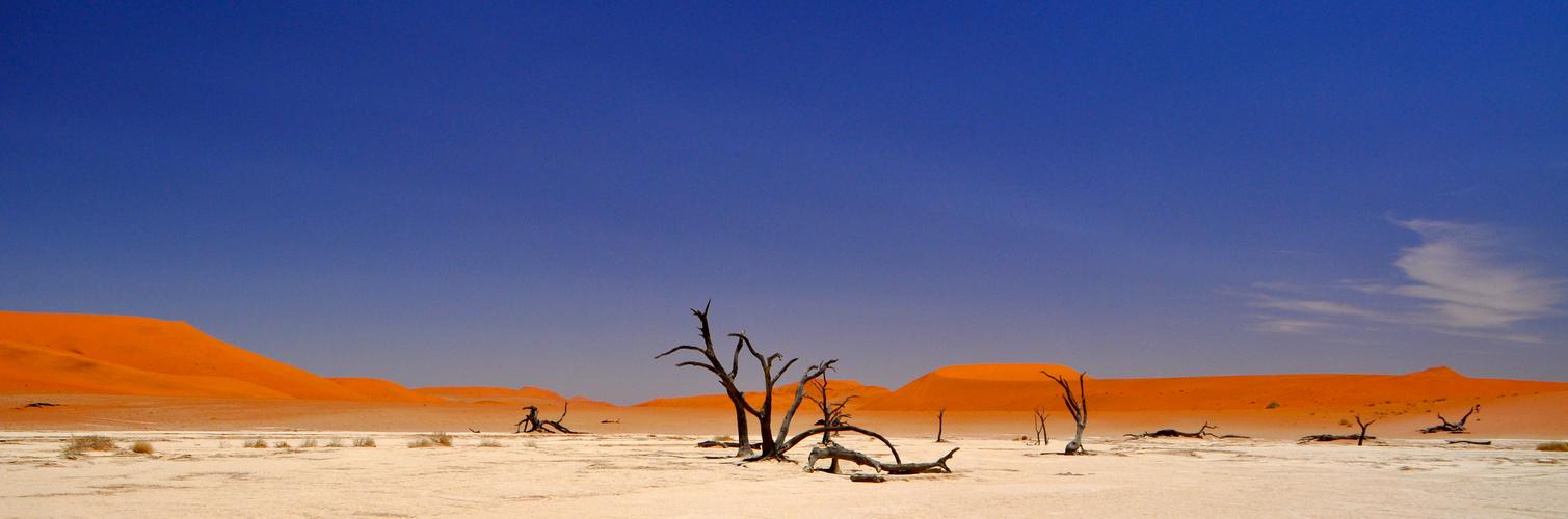 Weil es in Namibia Sossusvlei so schön ist ,gibt es noch ein Bild.