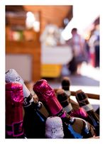 Wein auf dem Naschmarkt