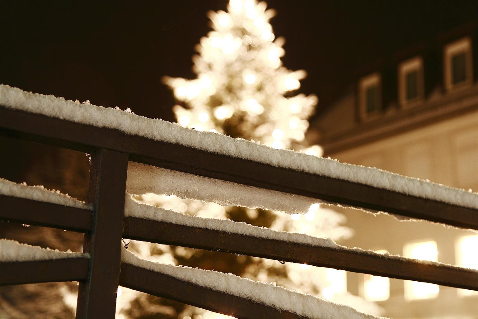 Weinachtsbaum hinter dem ersten Schnee