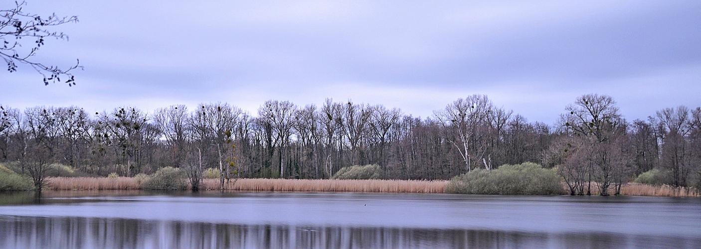 Weingartener Moor..