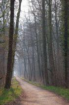 Weingartener Moor