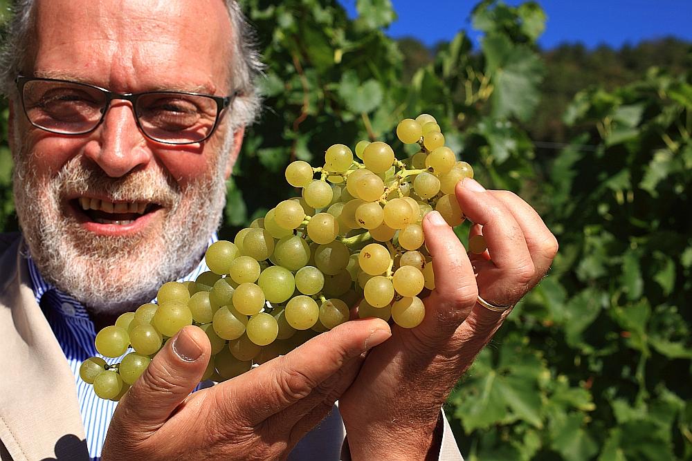 Weingut Castel Sallegg - Georg Graf Kuenburg mit etwas Goldmuskateller