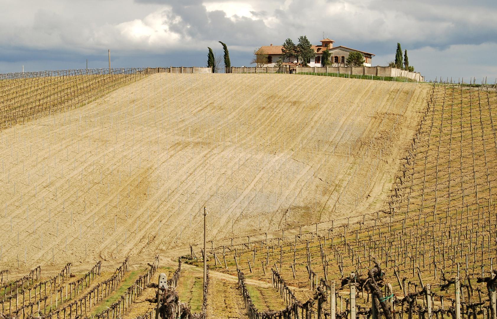 Weingut in der Toscana