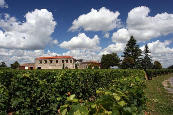 Weingut nahe Saint Emilion