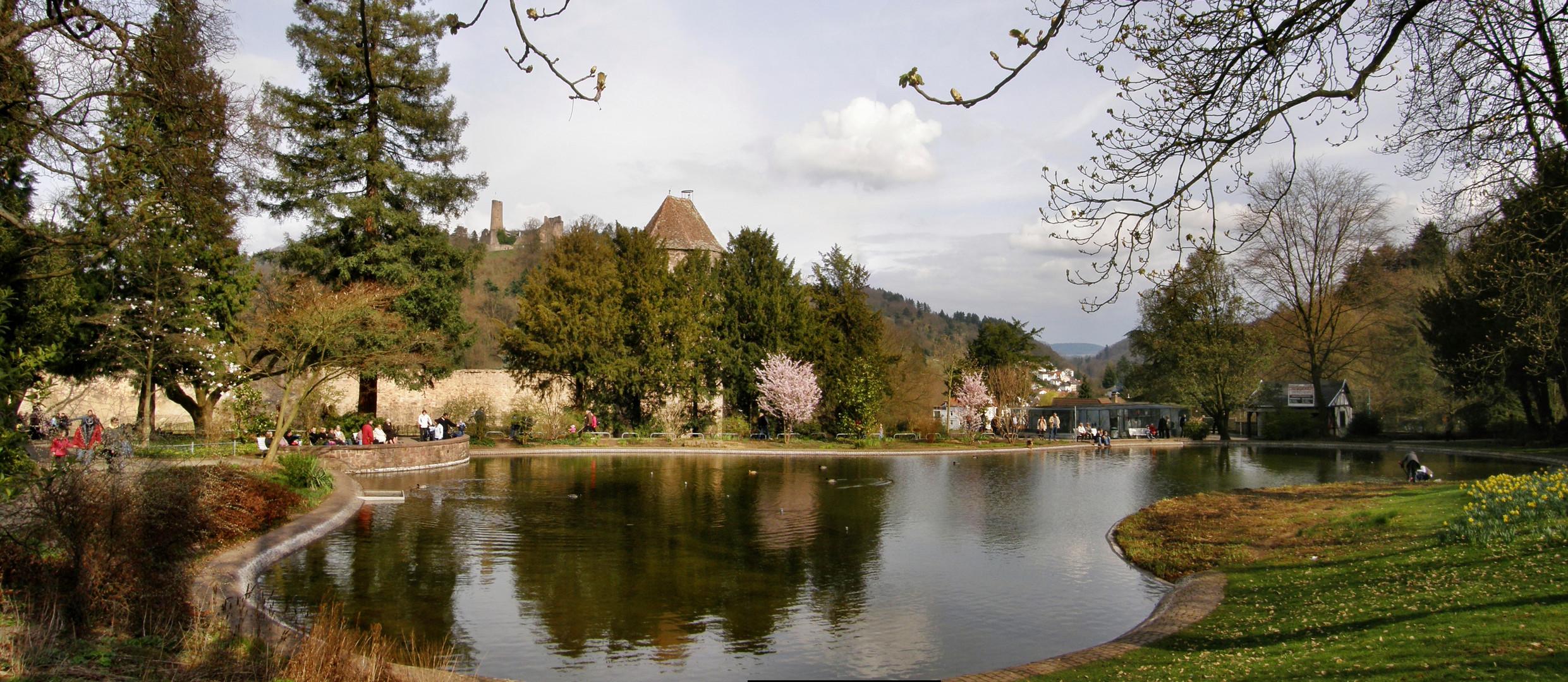 Weinheimer Schlossgartenteich