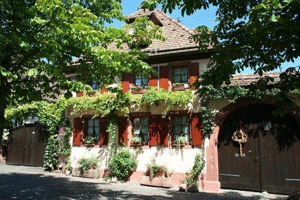 Weinort Rodt unter Rietburg