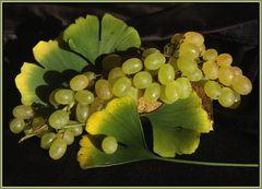 Weintrauben und Gingoblätter