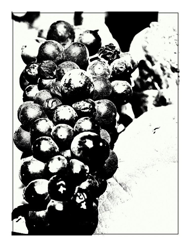 Weinwanderung im Heidiland