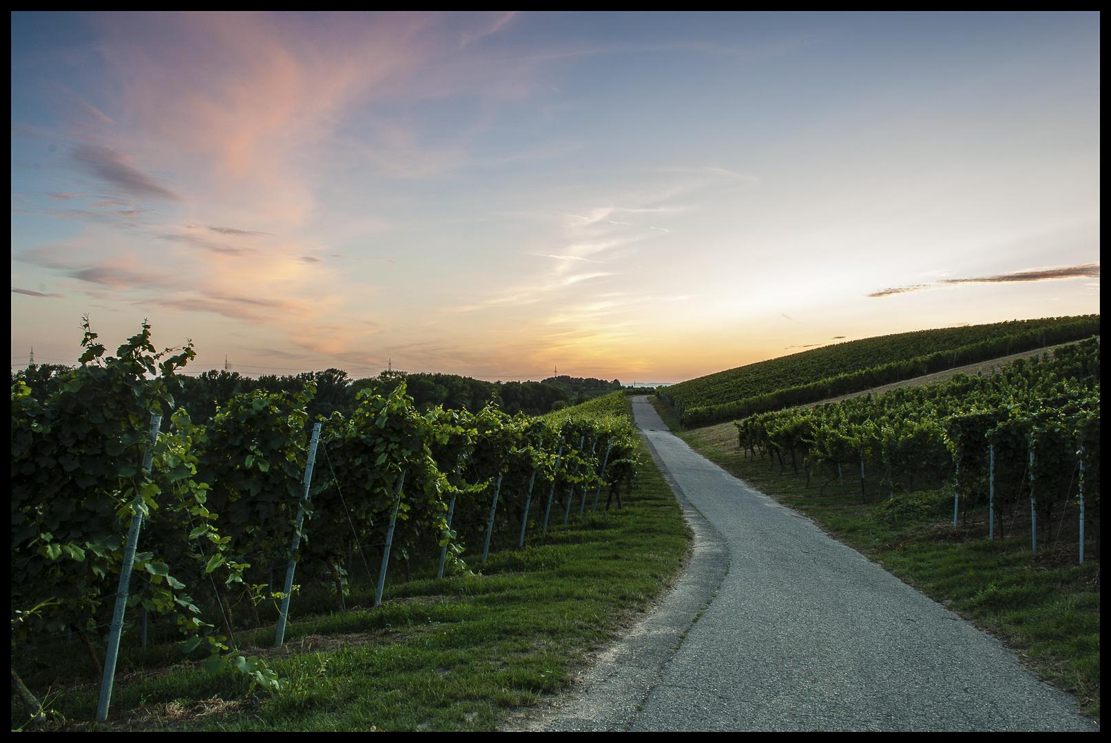 Weinweg