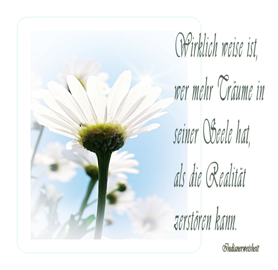 Image Result For Philosophische Zitate Einstein