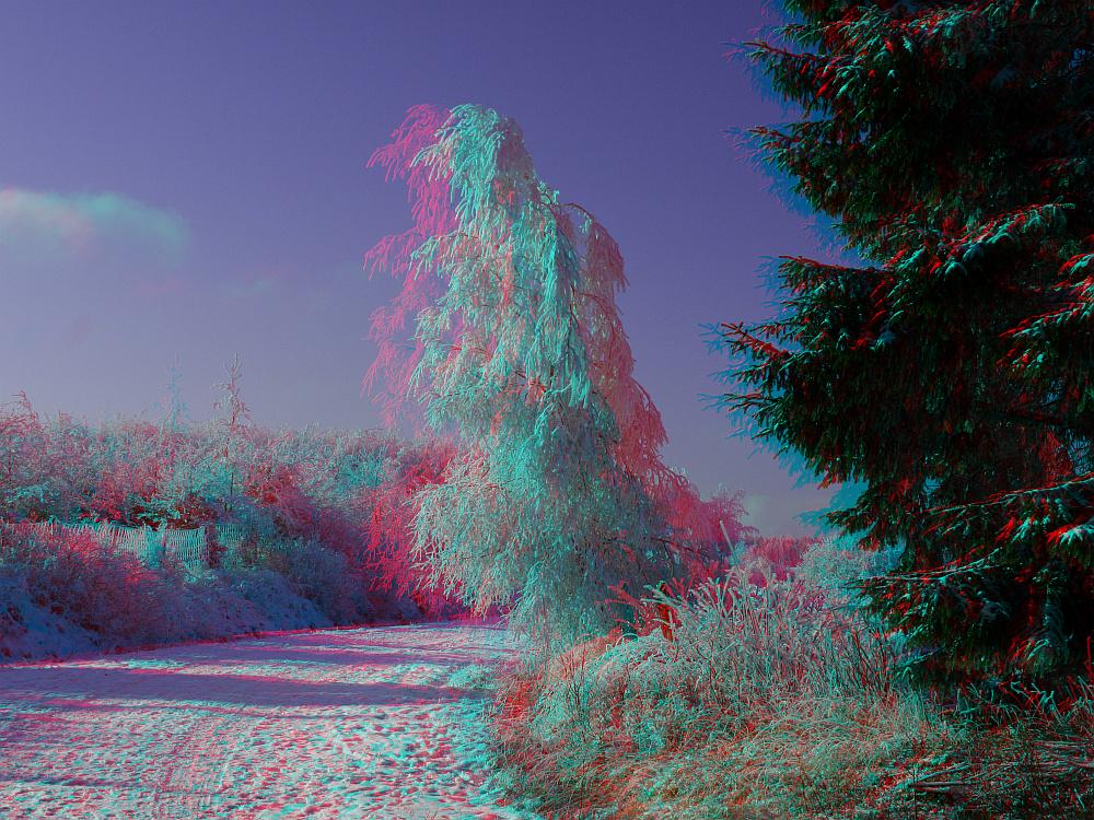 wei blau 3d bild mit rot cyan brille betrachten foto bild stereoskopische raumbilder. Black Bedroom Furniture Sets. Home Design Ideas