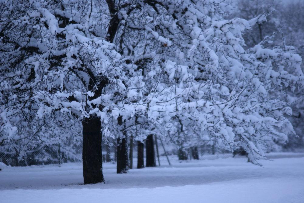 weiß und kalt