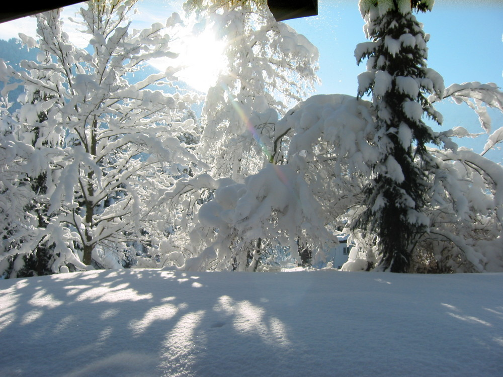 Weiß wie Schnee