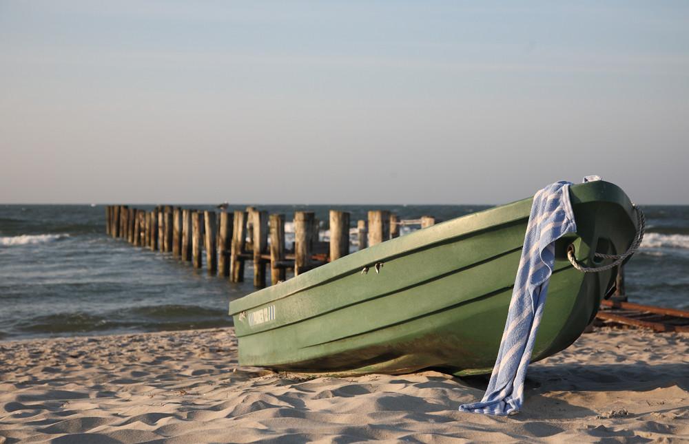 Weissblaues Strandgut vor Zingst