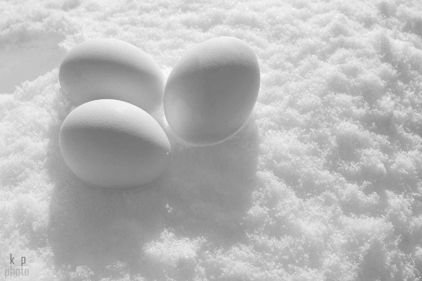 weiße Eier im Schnee