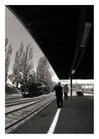 Weiße Linie