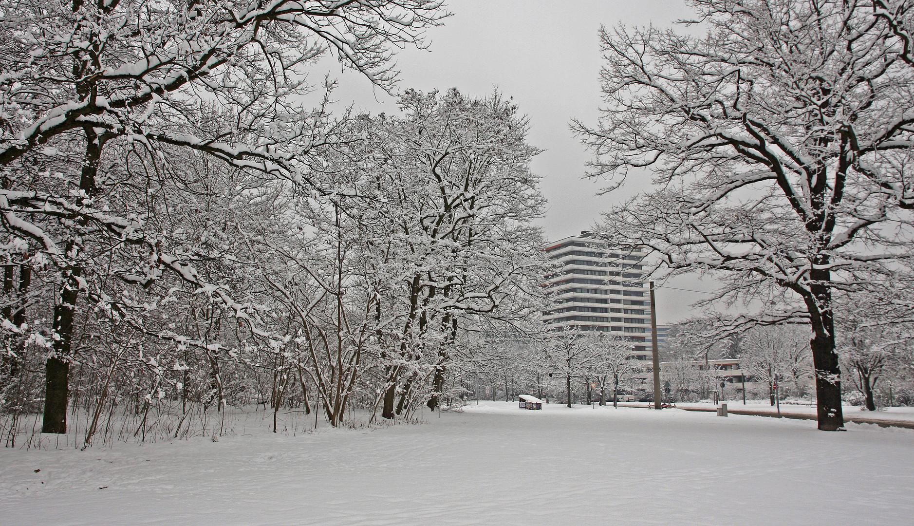 """Weiße Pracht im Park """"Luitpoldhain"""""""