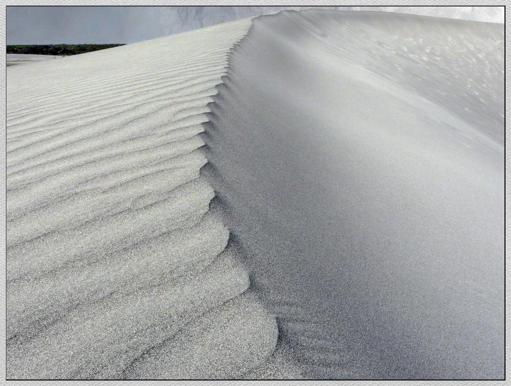 Weisse Sanddünen in der Wüste des Nubratals