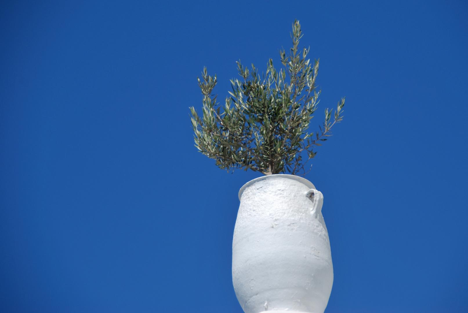 weiße Vase