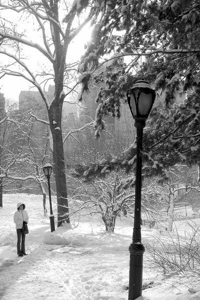 weisser Central Park