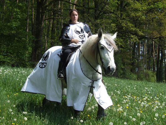 ~* Weißer Ritter *~