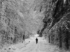 Weißer Spaziergang