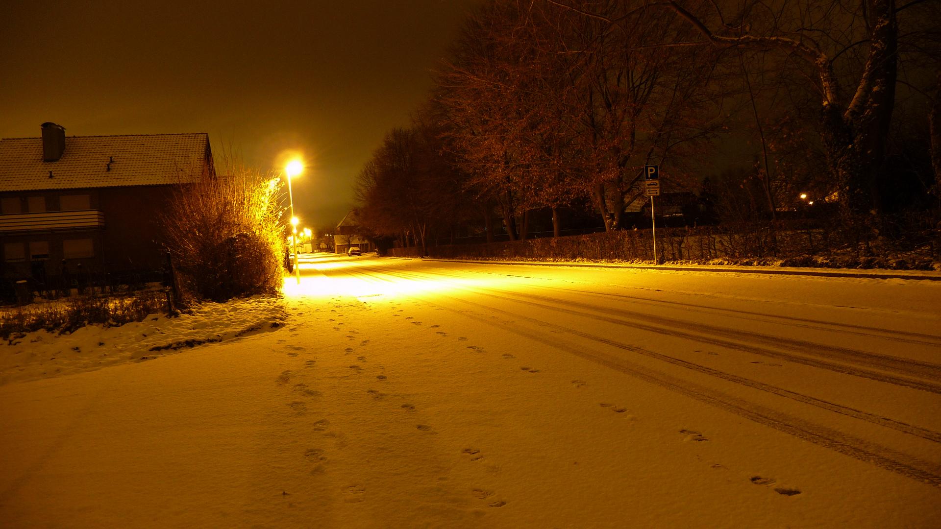 weißer Winter 2010
