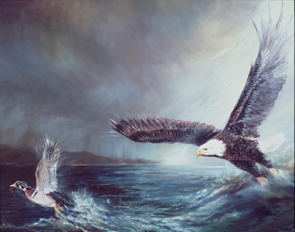 Weißkopfseeadler und Brautente (Gemälde)