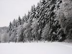 Weißwald.