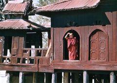 Weitblick...buddhistischer Mönch