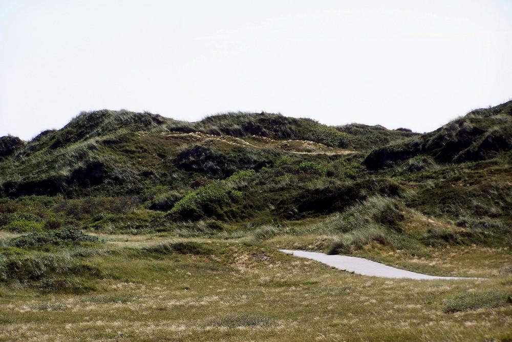 Weite Dünenlandschaft auf Langeog