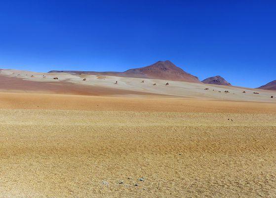Weite Salvador Dalí Wüste