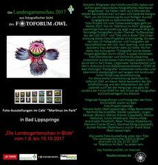 Weiter geht`s mit der 2. Ausstellung auf der Landesgartenschau in Bad Lippspringe