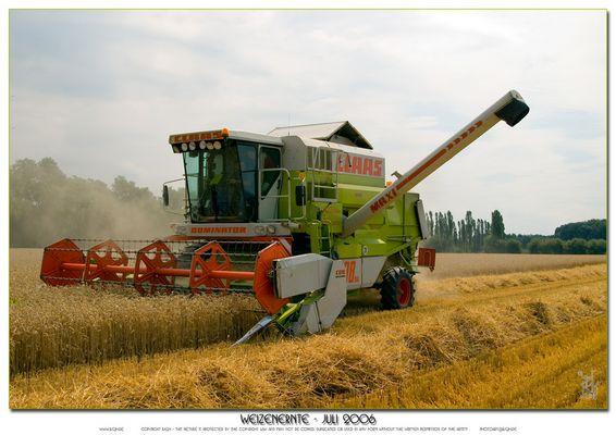 Weizenernte - Juli 2006 (2)