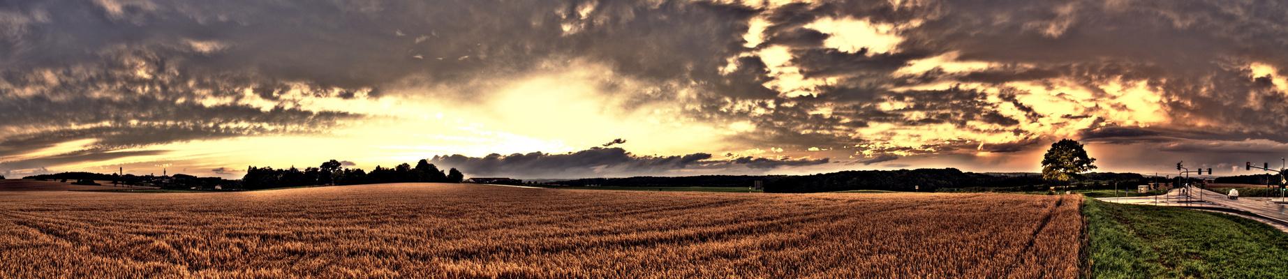 Weizenfeld vor der Apokalypse