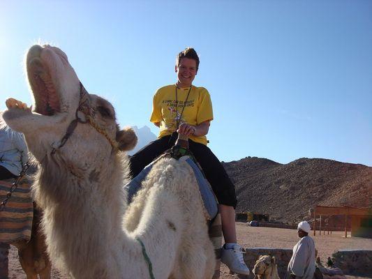 welches camel freut sich mehr :)