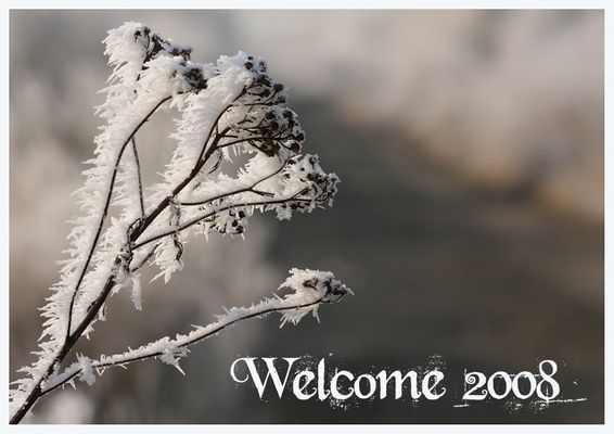 Welcome 2008