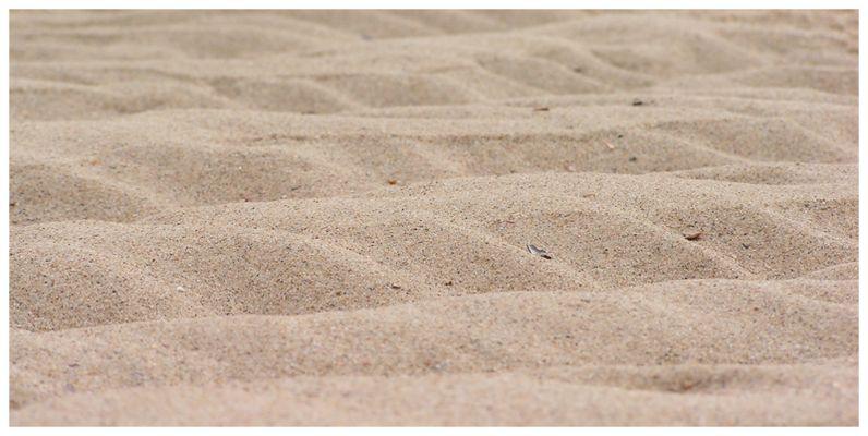 Wellen aus Sand