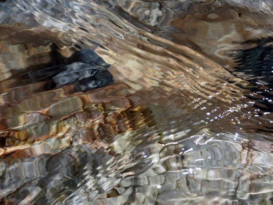 Wellen Formen