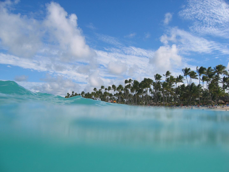 Wellen und Palmen