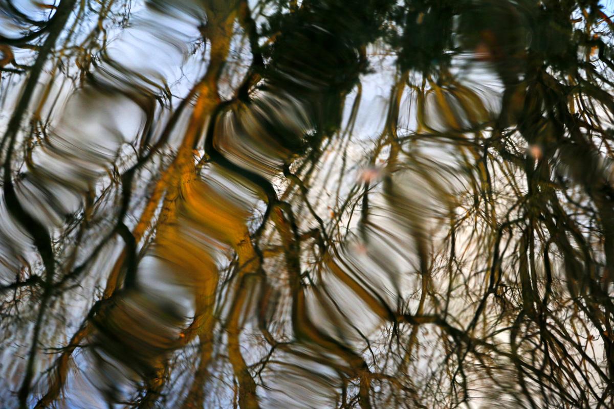 Wellen und Spiegelungen