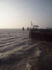 Wellenschlag der Wind so offen rau...