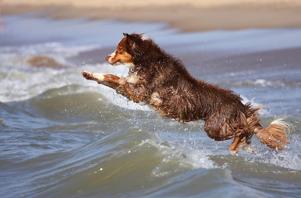 Wellenspaß