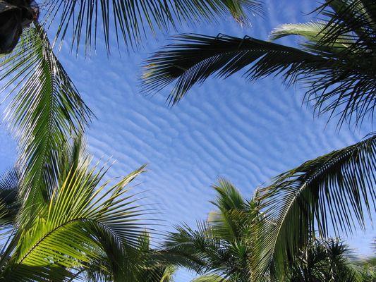 Wellenwolken
