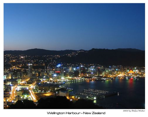 Wellington mit Weihnachtsbeleuchtung