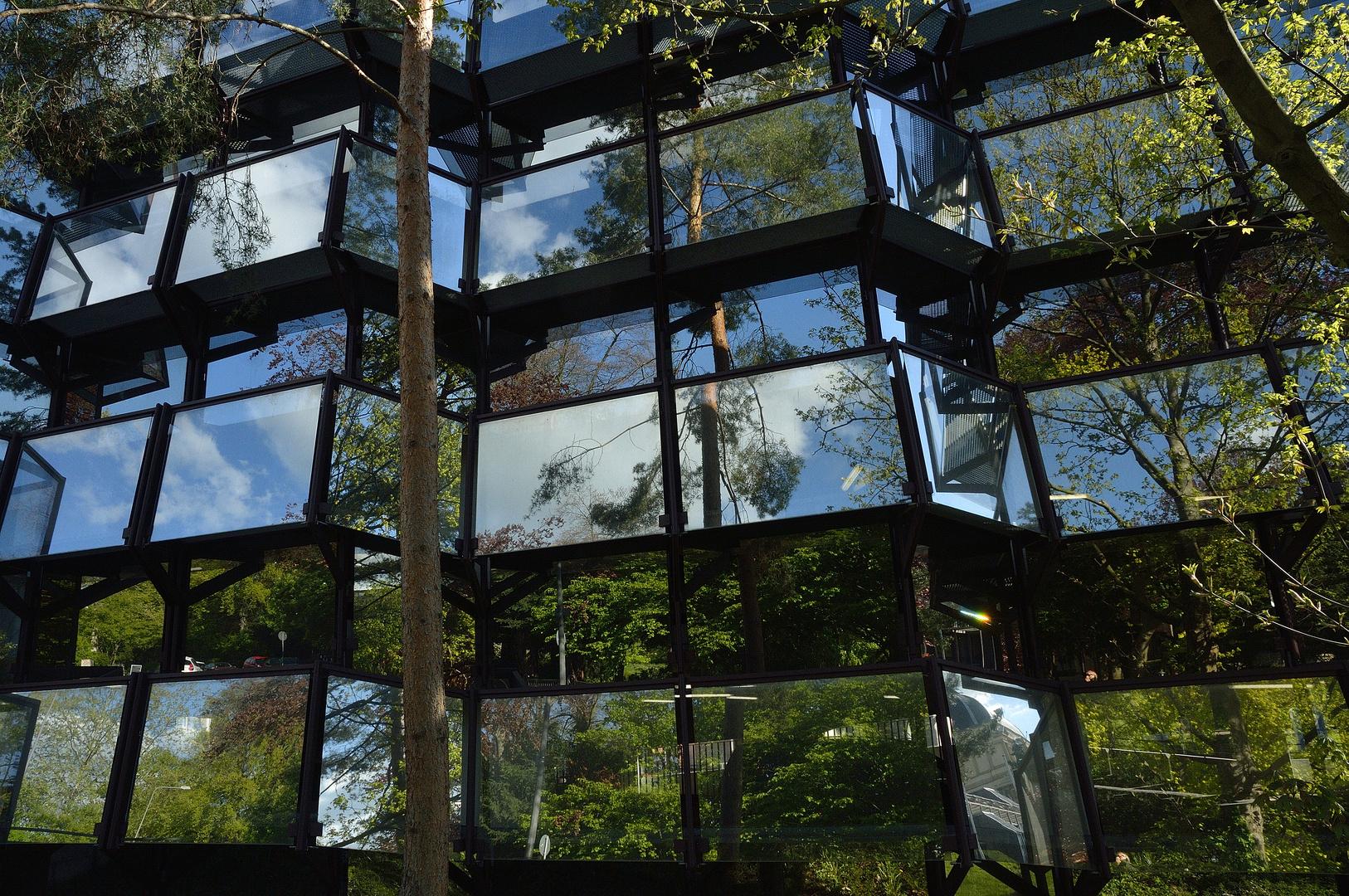 Welt im Glas