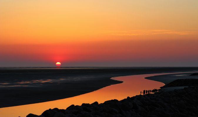 Weltnaturerbe Wattenmeer  (2)