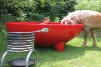 Weltneuheit.PigPot, der Pool für Herbst und Winter.