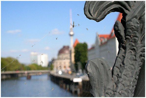 Weltstadt Berlin - einfach eine scharfe Skyline