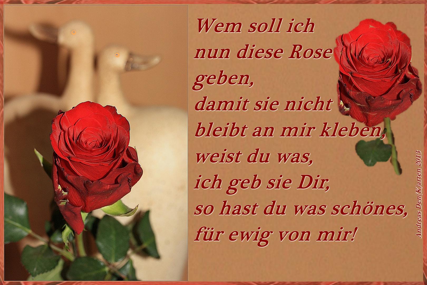 Wem soll ich nun diese Rose geben